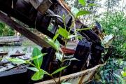 Andaman Coast-24