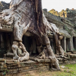 Angkor Wat-106