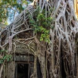 Angkor Wat-68