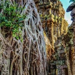 Angkor Wat-69