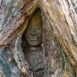 Angkor Wat-71