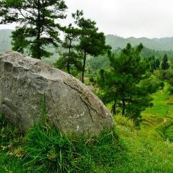 Assam-76