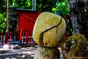 Impressions from Nicoya Peninsular