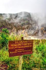 Sulawesi HDR-6