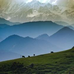 Himachal Pradesh-42