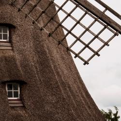 Schleswig Holstein-40
