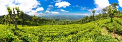 Sri Lanka Panorama-10.jpg
