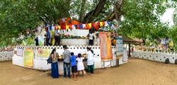 Sri Lanka Panorama-27.jpg