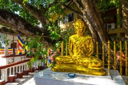 Sri Lanka-113.jpg