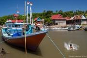 Sulawesi-38