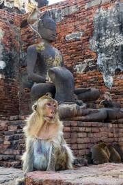 Unseen Central Thailand-58