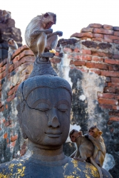 Unseen Central Thailand-54