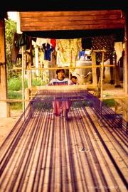 Thai Life-74