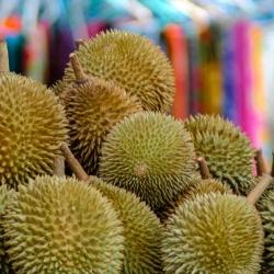 Thai Life-31