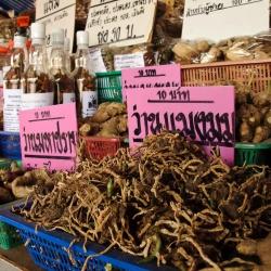 Northern Thailand-61