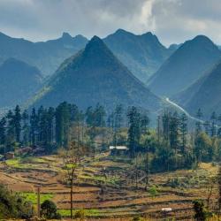 Vietnam-65.jpg