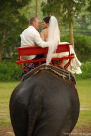 Weddings-15