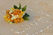 Weddings-158
